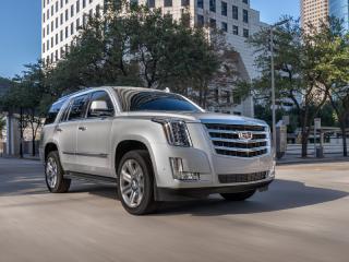 FAVORIT MOTORS второй месяц подряд стала лидером рынка по продажам автомобилей Cadillac!